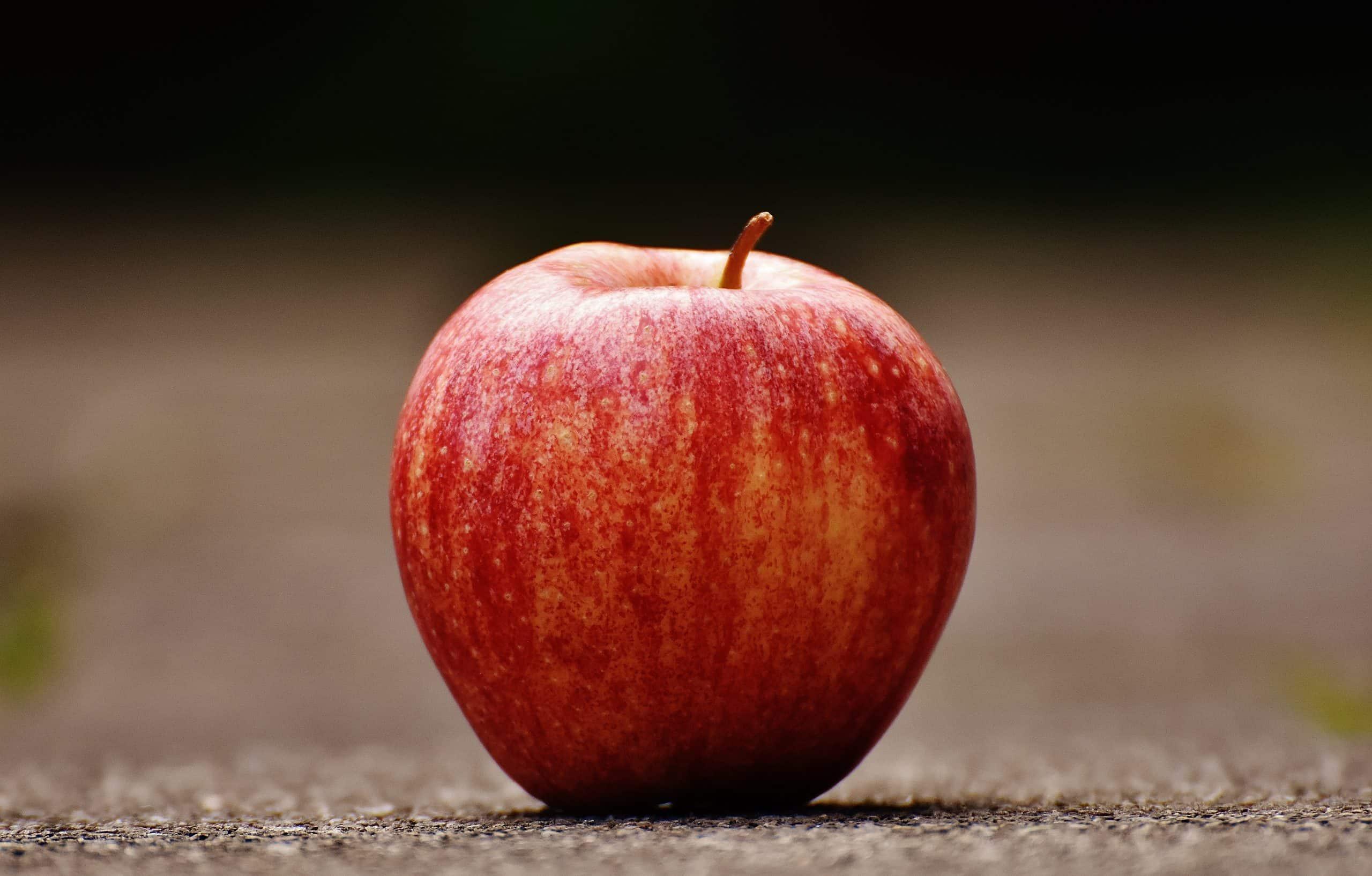 Comment faire germer un pépin de pomme sans germoir ?